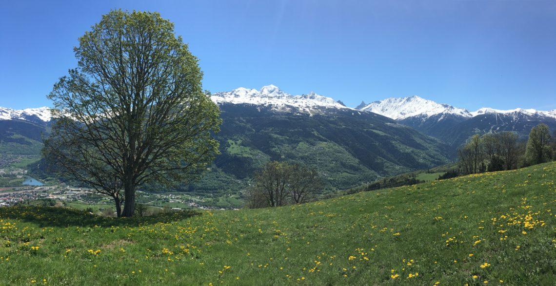 méditation en montagne